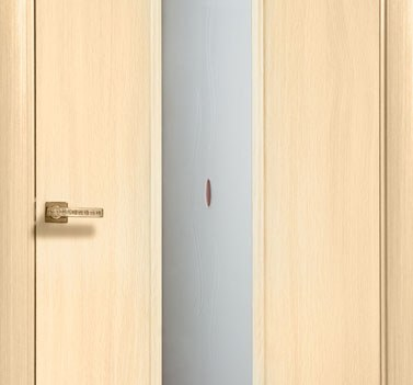 "Дверь ""Модерн"" модель 305-СТ"
