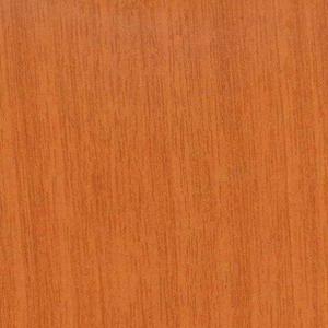 Миланский орех (ветка)